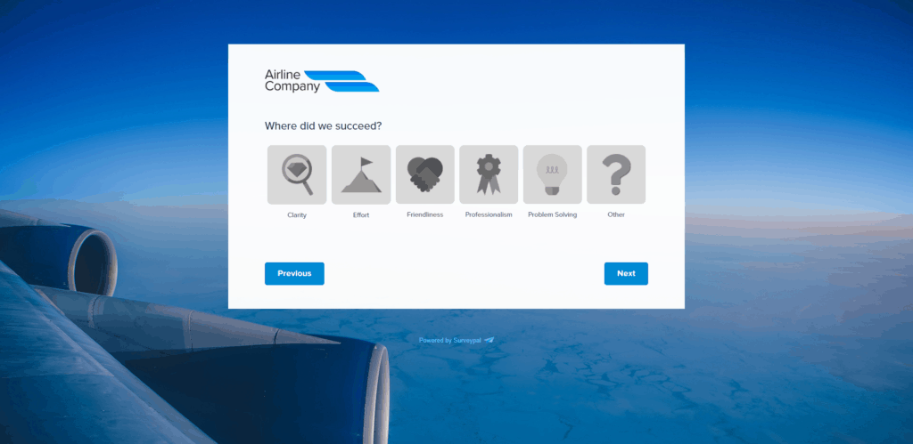 airline experience survey
